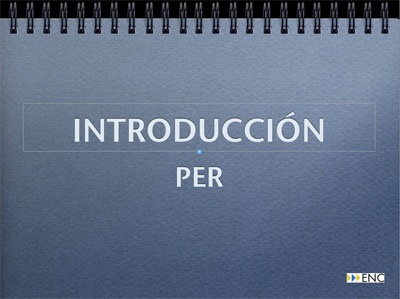 Video-introduccion-al-Curso-de-PER