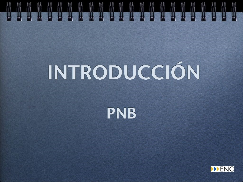 Video-introduccion-al-curso-de-PNB
