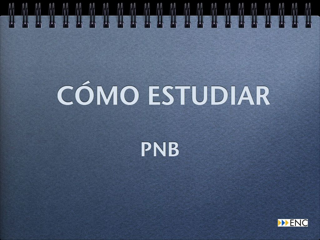 Video-como-estudiar-el-curso-de-PNB